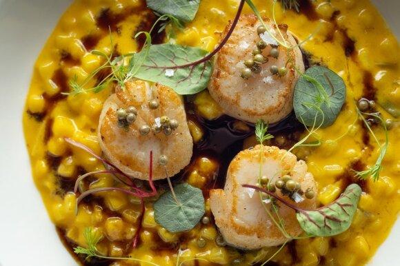 Bulvių rizoto su moliūgais. (30 geriausių restoranų nuotr.)
