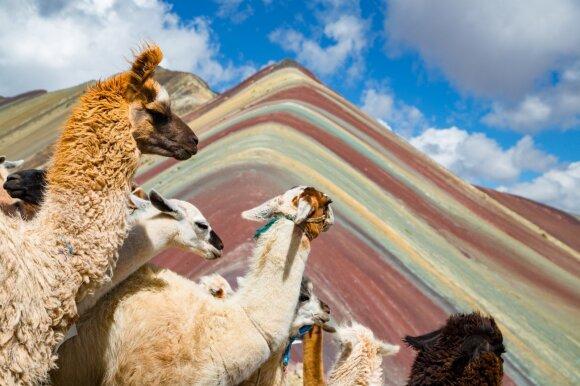 Septynių spalvų kalnas