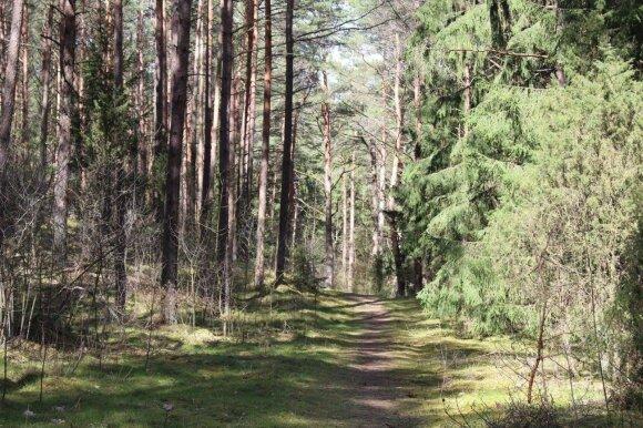 Nature trails in and around Kaunas