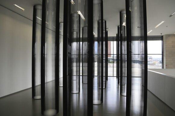 """Žilvinas Kempinas. """"Kolonos"""" (2006)"""