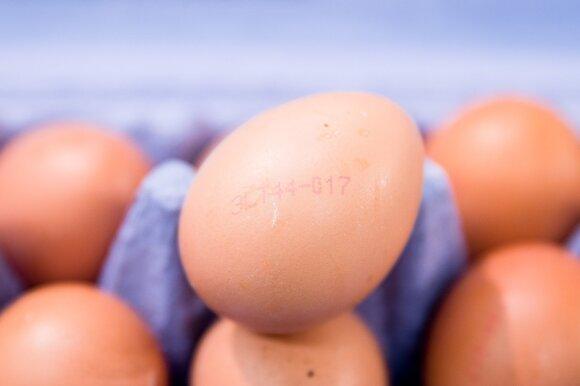 Prekybos tinklai nori atsisakyti pigiausios kiaušinių rūšies