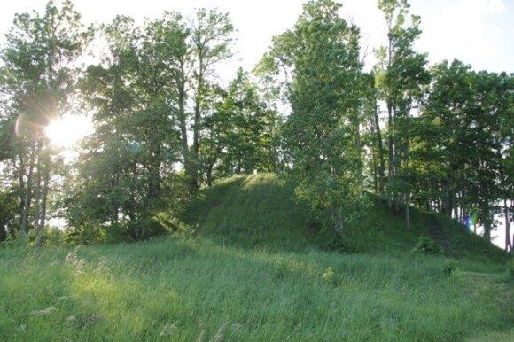Džiugo piliakalnis