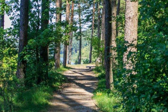 Neatrasti Kauno marių maršrutai: rojus ramybės ir tylos ištroškusiems miestiečiams