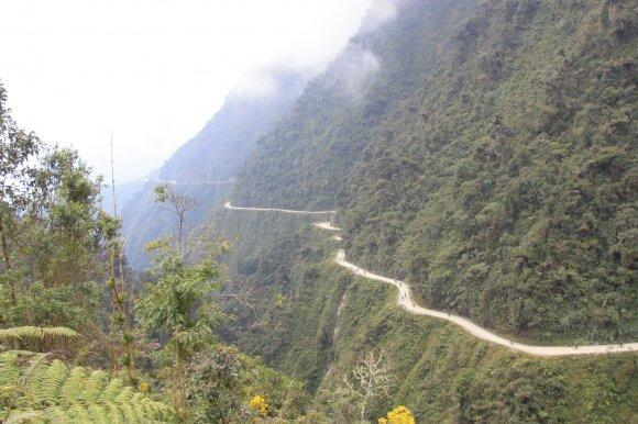 Jungaso kelias