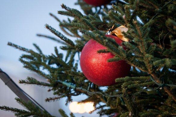 Dalijasi patarimais: kokią eglę puošti Kalėdoms