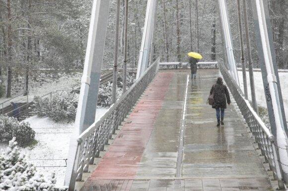 Gamtos išdaigos stebins ir toliau: anksčiau skelbtos prognozės nepasitvirtins, tikrasis pavasaris bus birželį