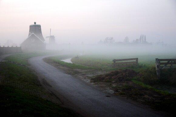 Nyderlandų žemumos