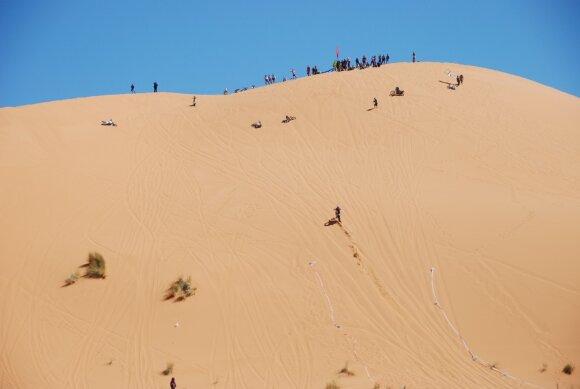 Tuaregų ralis