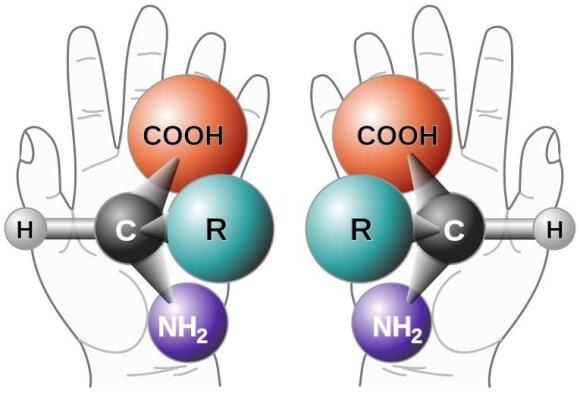 Aminorūgščių molekulės gali pasižymėti skirtingu chirališkumu