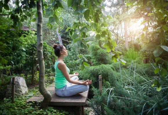 Pamokos suaugusiems atostogų metu: trokštantiems naujų potyrių ir įgūdžių