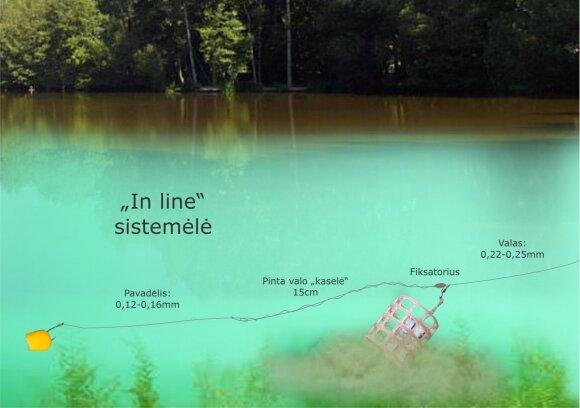 """""""In line"""" sistemėlės schema"""