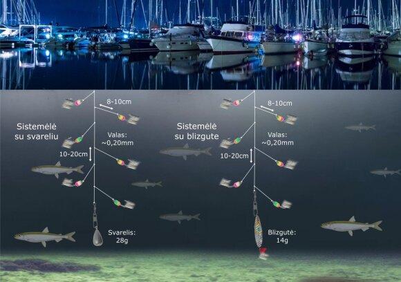 Schema. Stintų žvejyba