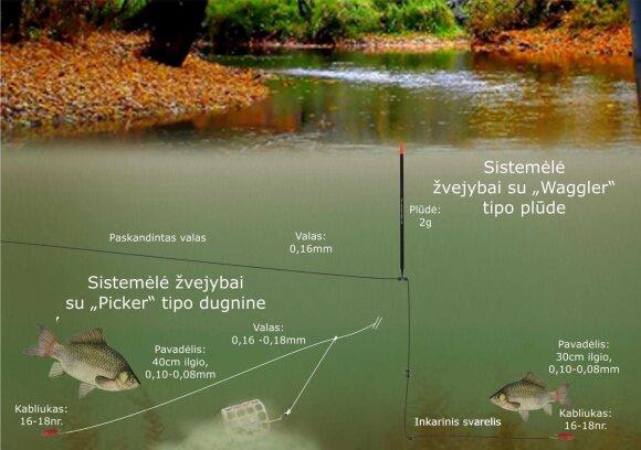 Schema. Karosų žvejyba rudenį