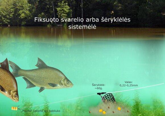 Schema. Karšių žvejyba