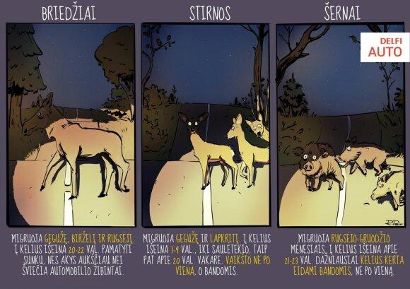 Laukiniai gyvūnai