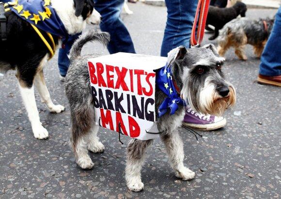 """Liko mėnuo iki """"Brexit"""": už siuntinius – papildomi mokesčiai, o norintiems dirbti – griežtesni reikalavimai"""