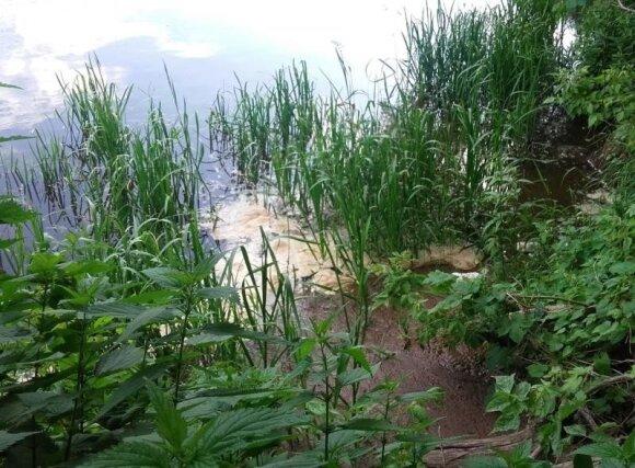 Į Neries upę vėl pasipylė fekalijos