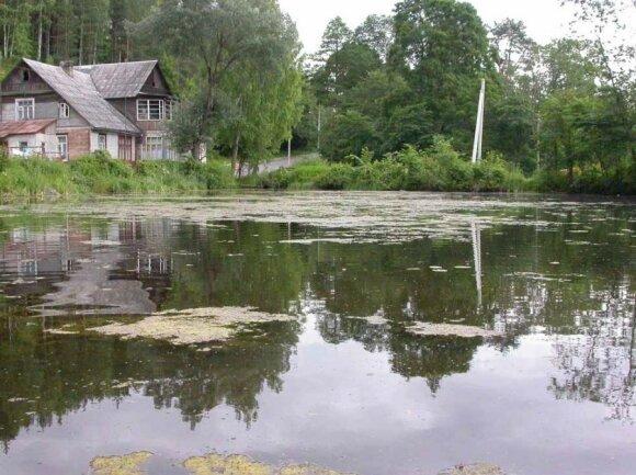 Užželti pradedantis ežeras