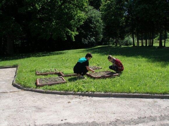 Kaip įrengti vaikus dominantį daržą
