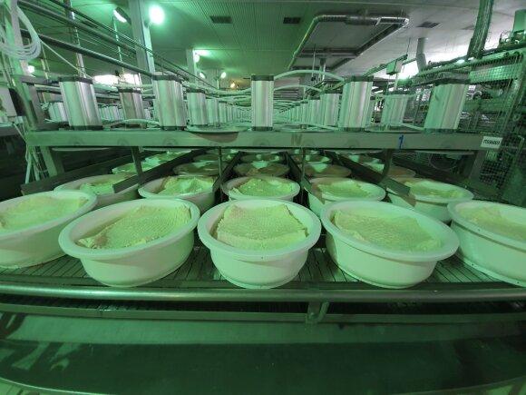 Sūrio gamyba