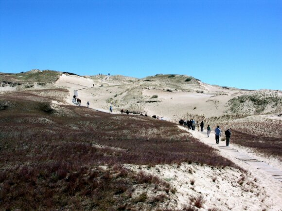 Naglių gamtinio rezervato pažintinis takas