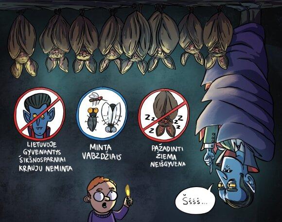 Mitai ir tiesa apie šikšnosparnius