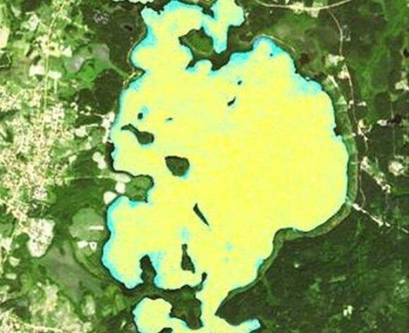"""Platelių ežero """"žydėjimas"""" iš kosmoso"""