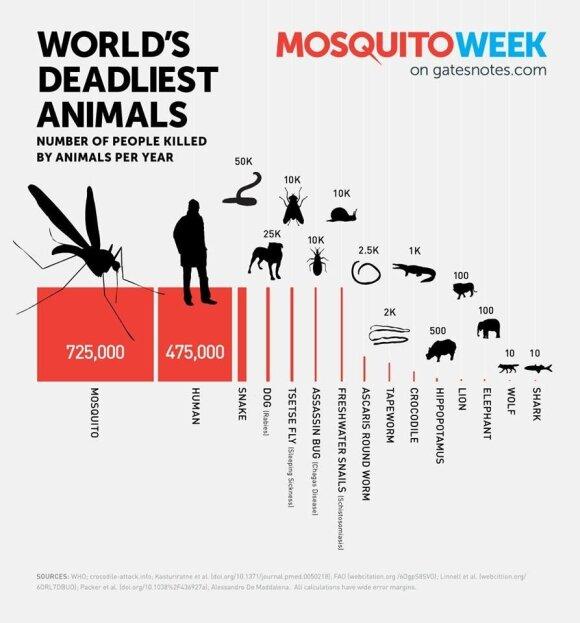 Najwięksi zabójcy ludzkości. Źródło: Światowa Organizacja Zdrowia, WHO
