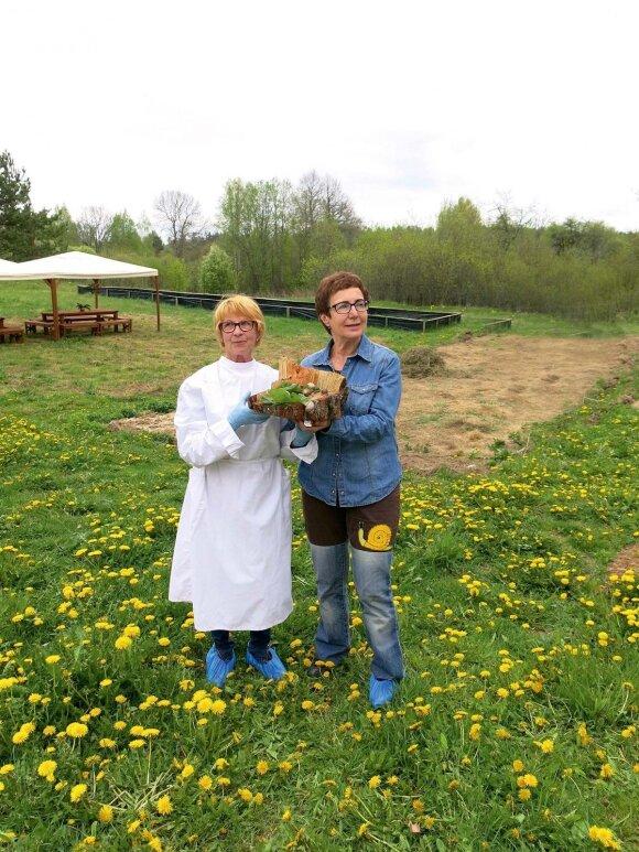 Sraigių ūkio savininkės Natalija Pronckienė ir Saulina Jegelevičienė iš šių moliuskų geba iškepti net Napoleono tortą