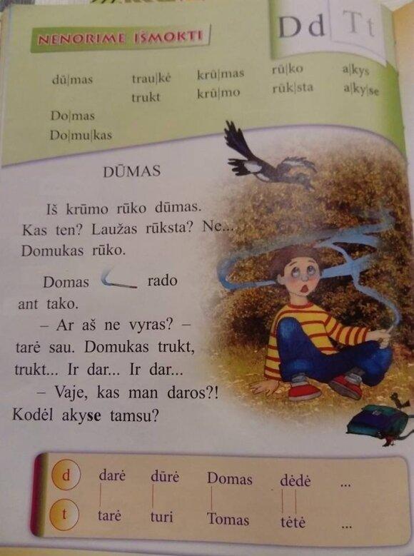 Tėvus įaudrino du lietuvių kalbos vadovėlių tekstai – ekspertai ramina, kad ne viskas taip blogai