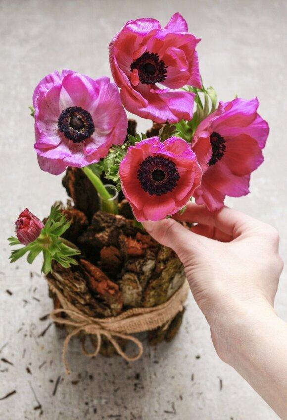 Pavasariška namų dekoro idėja žingsnis po žingsnio