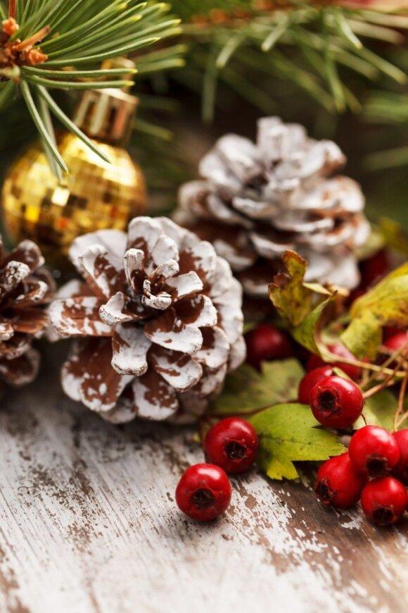 Stilingos kalėdinio dekoro idėjos