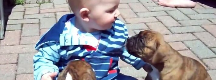 Ar būna mieliau? Pirmoji kūdikio pažintis su dviem mažyliais