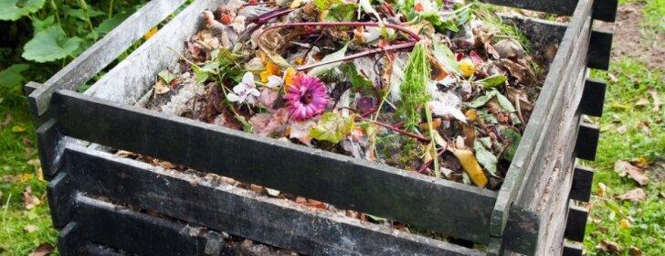 Specialistų patarimai, kaip pasidaryti kompostinę