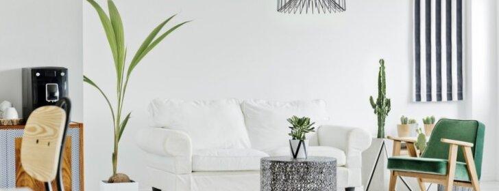 10 patarimų, kaip į namus įsileisti daugiau šviesos