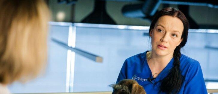 Veterinarė įvardijo didžiausius šiuo metu tykančius pavojus: ką būtina žinoti?