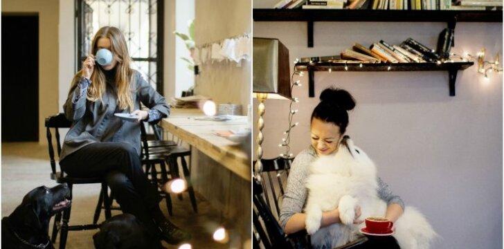 Šuneliai kavinėje