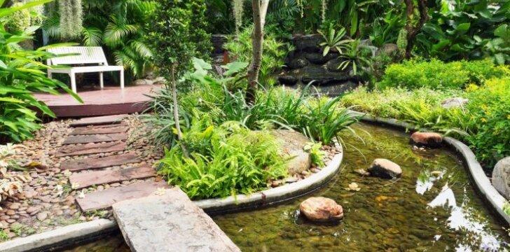 Dekoratyvinio upelio įrengimas jūsų kieme - pagrindiniai principai