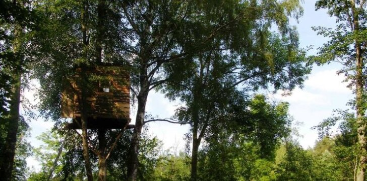 Vakarop namas tarsi pasislepia medžių lapijoje