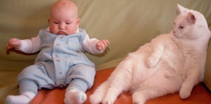 Įspūdinga kūdikio reakcija pamačius katę: video, kuris pakels nuotaiką