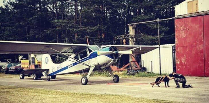 Šuo tempia lėktuvą