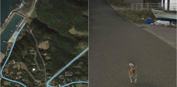 """""""Street View"""" automobilio gaudynės"""