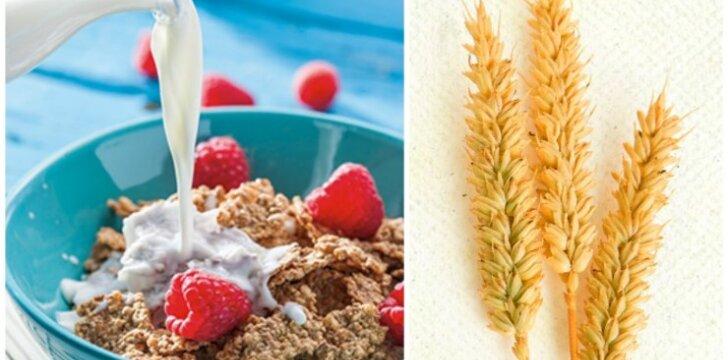 """""""Nestlé"""" pusryčių dribsniai – ne tokie saldūs, kaip jums gali pasirodyti"""