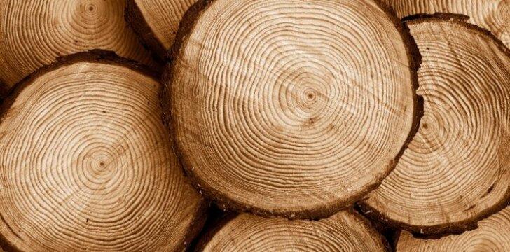 Medienos rūšys baldams, statiniams ar daiktams gaminti