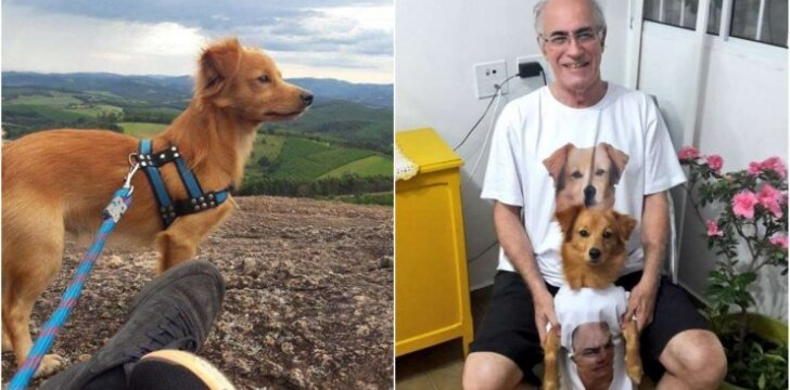 V. Carleto su šunimi