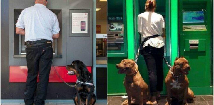 Prie bankomatų žmones lydi šunys
