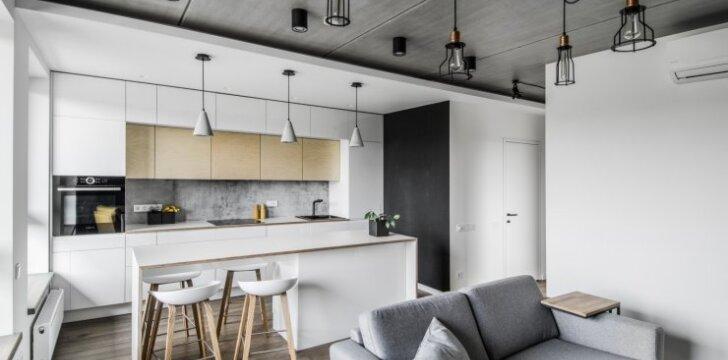 45 kv.m butas Vilniuje: betonas ir fanera – nebūtinai tik statybinė medžiaga