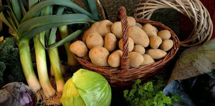 Kaip rudenį ilgiau išlaikyti mėgstamas daržoves šviežias?