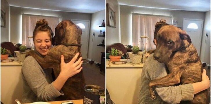 Priglaustas šuo apsikabina šeimininkę