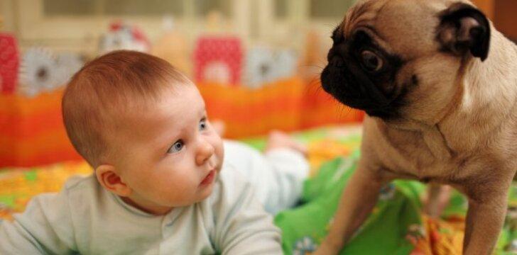 """Milijoną prajuokinęs video: kūdikis ir šuo <span style=""""color: #ff0000;""""><sup>VIDEO</sup></span>"""